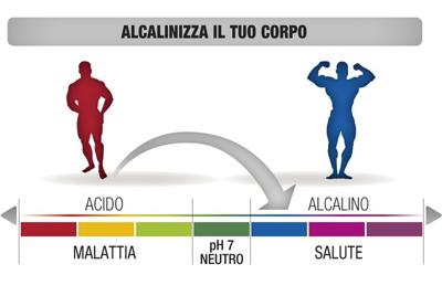 equilibrio acido base nellalimentazione
