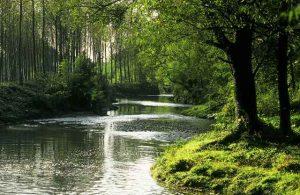 fiume-scorre